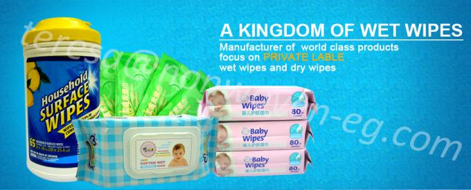 Healthy Adult Wet Wipes