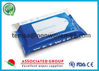 Sanitary Disinfectant Wet Wipes